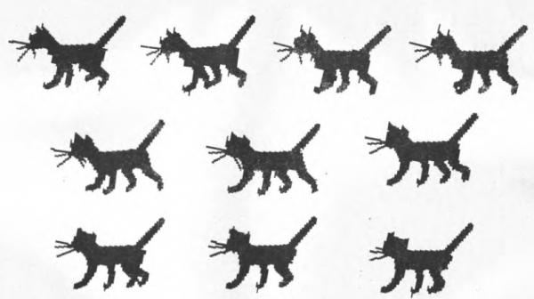 Отдельные кадры анимации «Кошечка»