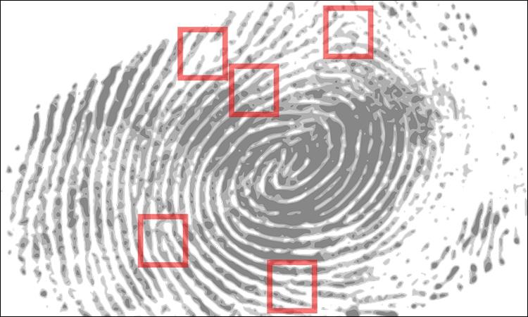Российские банки намерены внедрить системы биометрической идентификации