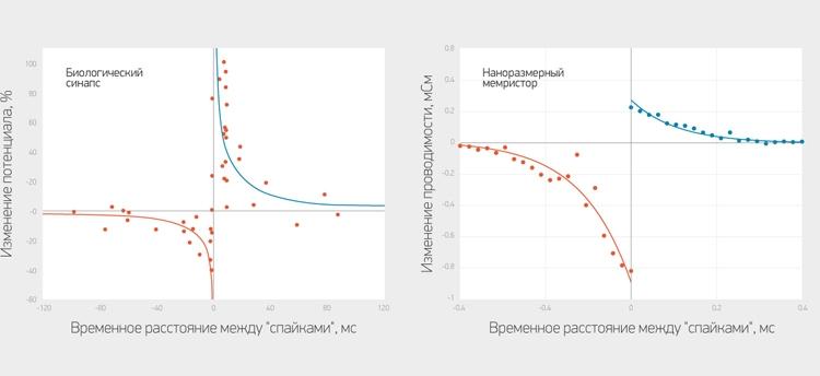 Изменение проводимости мемристоров в зависимости от временного расстояния между «спайками» (справа) и изменение потенциала на биологических синапсах (слева) / МФТИ