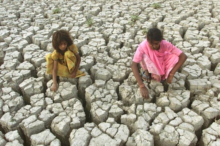 Засуха в Индии