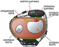 Изображение - Прибор для мониторинга артериального давления sm.EVBP_2.800