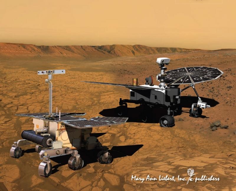 Европейский и американский роверы должны были исследовать поверхность Марса совместно. Рисунок с обложки журнала Astrobiology (v.10, №7, September 2010)