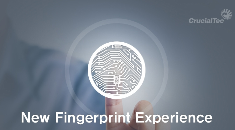 Смартфоны со сканером отпечатков пальцев в зоне дисплея уже в этом году