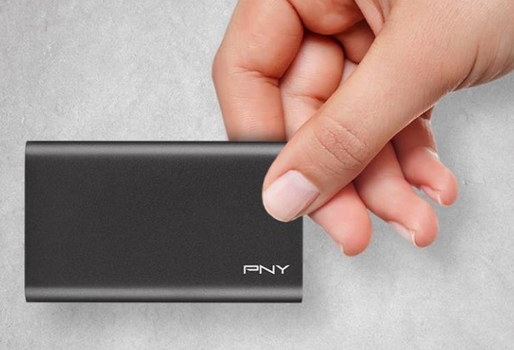 pny2 - Карманный SSD-накопитель PNY Elite вмещает до 480 Гбайт информации