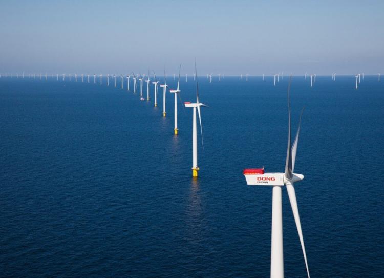 www.offshorewind.biz
