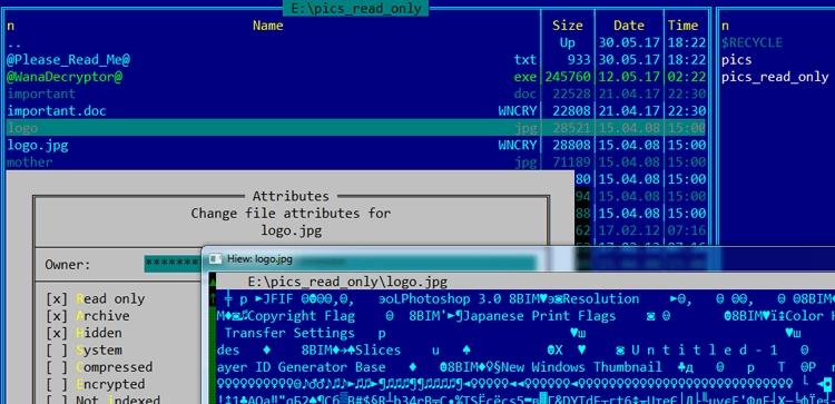 Оригинальные файлы с защитой от записи не зашифровываются
