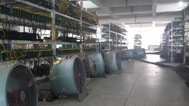 Обычная китайская ферма