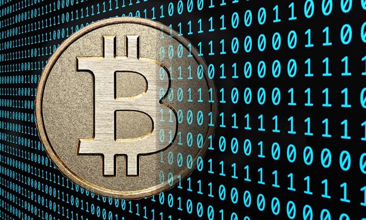 В Санкт-Петербурге суд заблокировал 40 сайтов-обменников криптовалюты