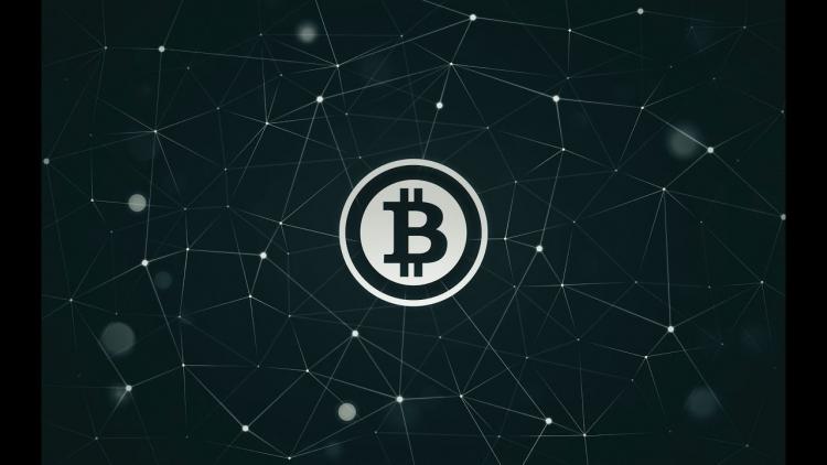 cryptoroboreview.com