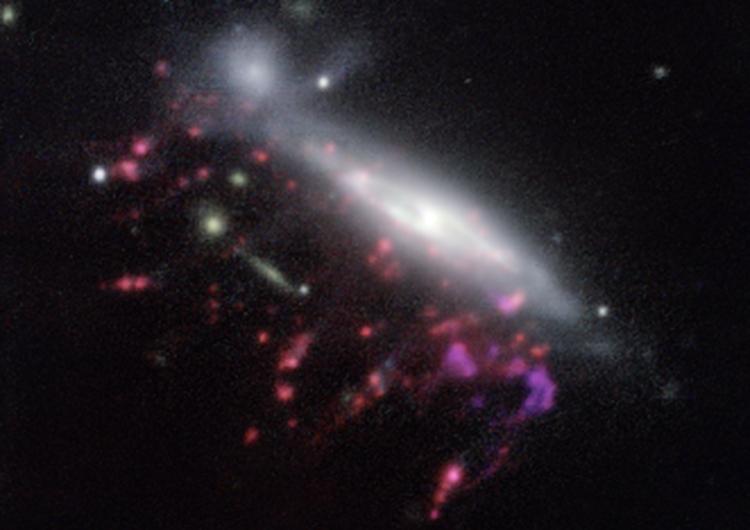 Примеры галактик-медуз