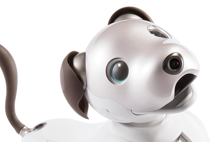 """Робособака Sony aibo нового поколения стала более естественной и умной"""""""