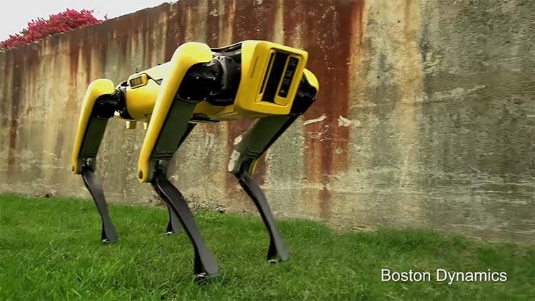 """Видео: новейший робот Boston Dynamics выглядит менее пугающе"""""""