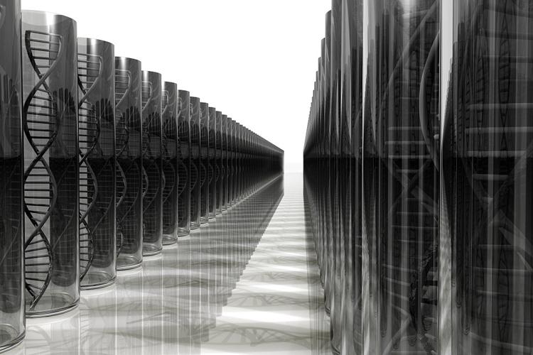 """Цены на жёсткие диски тормозят развитие доступного ДНК-секвенирования"""""""