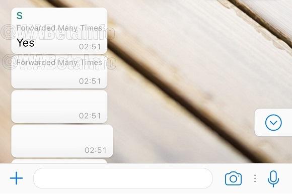 """WhatsApp начал предупреждать о многократно пересылаемых сообщениях"""""""