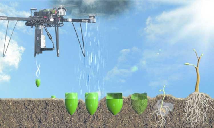 45454555454 - Дроны могут помочь в озеленении планеты