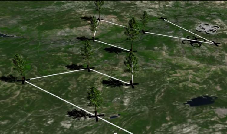 sm.screen shot 2015 02 17 at 09 50 06.750 - Дроны могут помочь в озеленении планеты