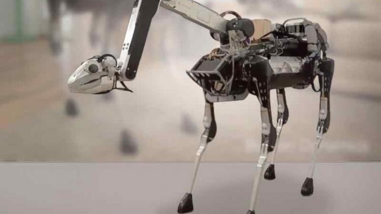 """Видео дня: робот Boston Dynamics открывает двери для себя и сородичей"""""""