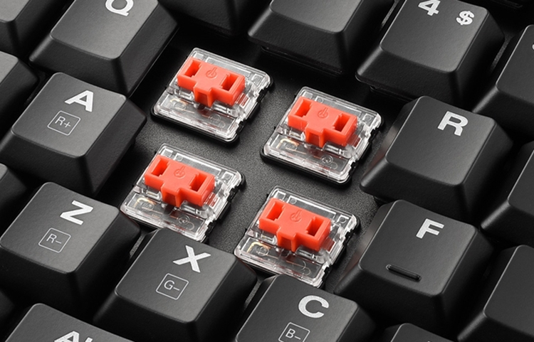 "Компактная клавиатура Sharkoon PureWriter TKL RGB получила многоцветную подсветку"""