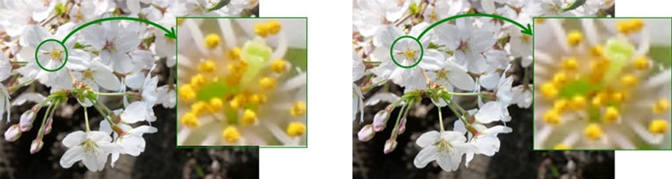 Сравнение картинки на новом (слева) и предыдущем микродисплее OLED (Sony)