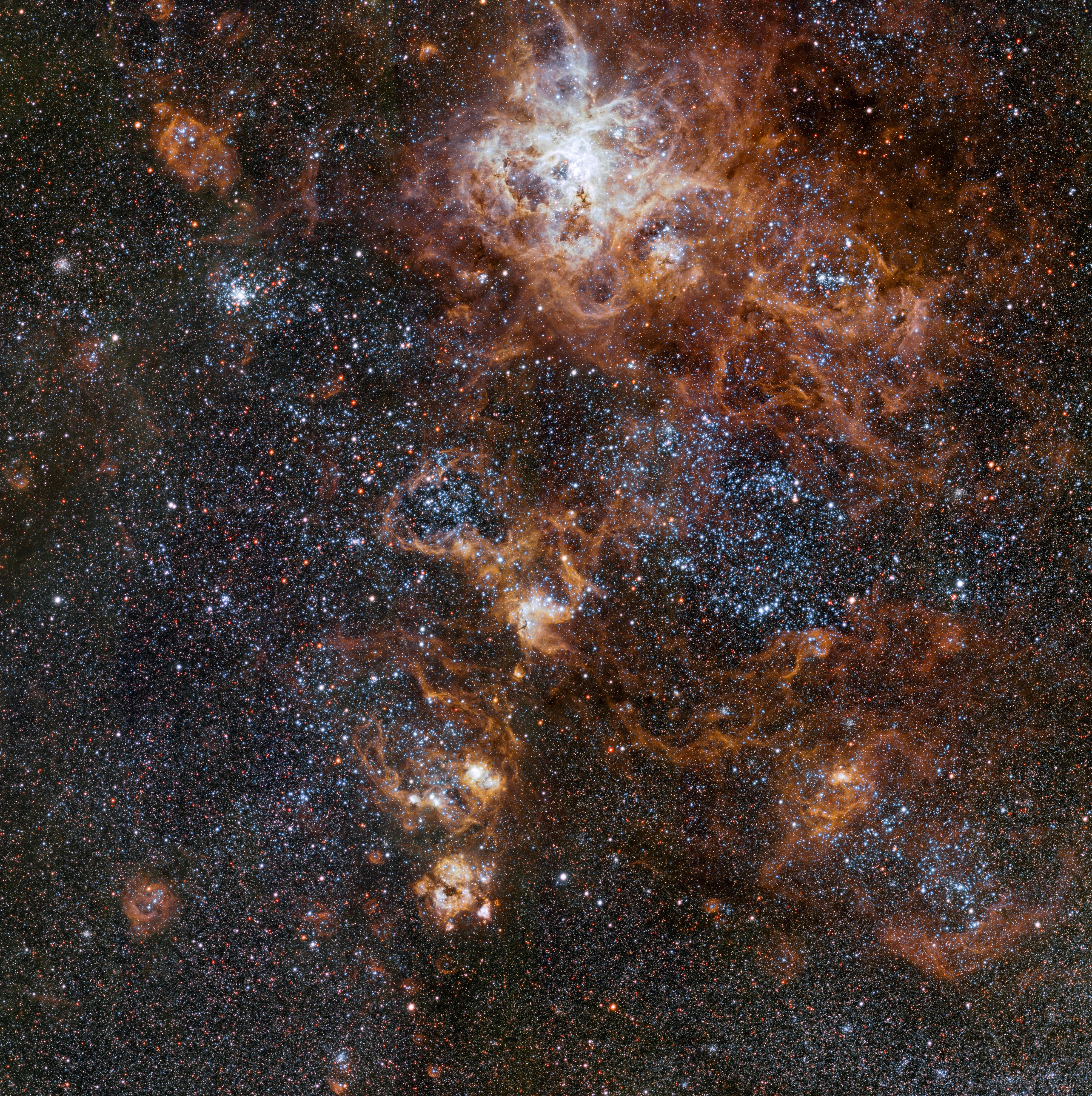 Черный рыцарь фото космос дольками выложите