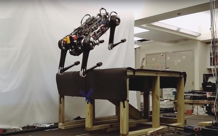 """Видео дня: робот Cheetah 3 демонстрирует различные стили движения"""""""