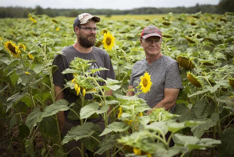 Фермеры Брэд Богл (слева) и его отец Барри (J.P. Moczulski, theglobeandmail.com)
