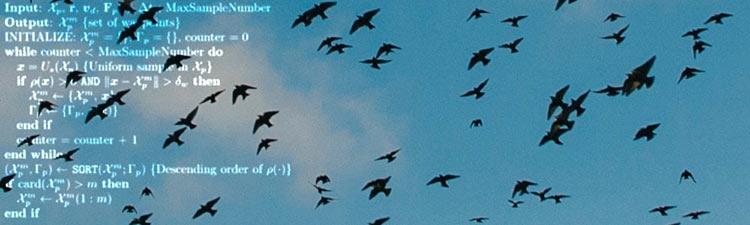 """Инженеры учат беспилотники автоматически уводить стаи птиц от аэропортов"""""""