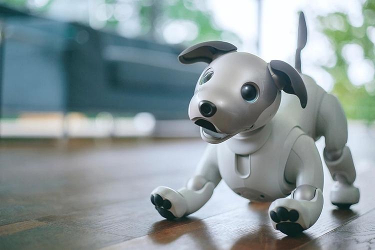 """Робопёс Sony Aibo поступит в магазины США в сентябре"""""""