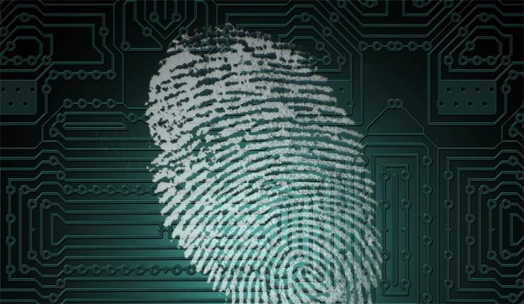 """Все смартфоны серии Samsung Galaxy S10 получат экранный сканер отпечатков пальцев"""""""