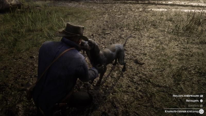 В открытом мире можно погладить любую собаку. И вы это сделаете не раз, ведь почему бы и не погладить?