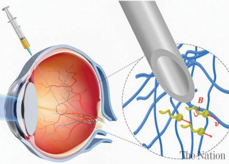 """Учёные создали нанороботов, способных «просверлить» ткань глаза, не повредив её"""""""