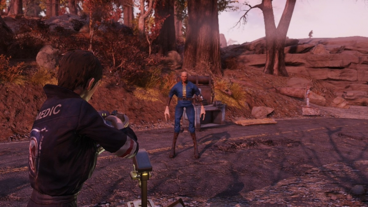 The players are mutants in Fallout 76 due to a bug with
