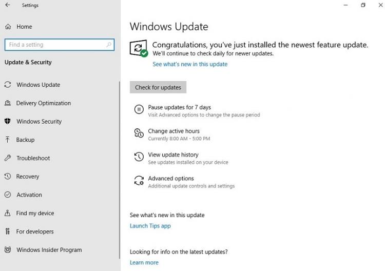 Windows 10 нанесла мощный удар вспину всем пользователям