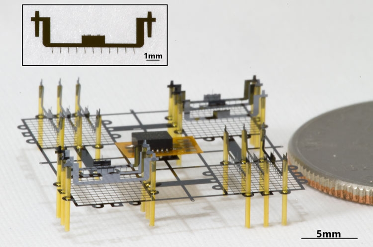 """В Беркли разрабатывают роботов-насекомых с двигателями на ионной тяге"""""""