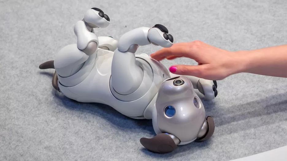 "Новая игрушка расширит способности робота-собаки Sony Aibo"""
