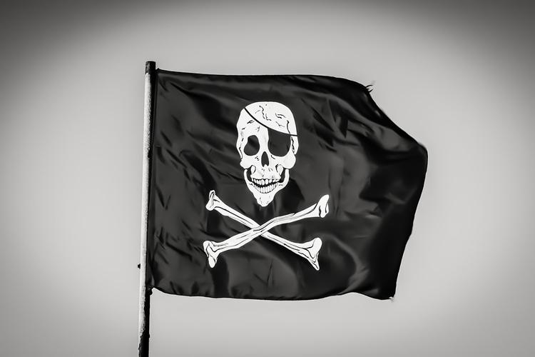 """Количество заблокированных в РФ «зеркал» пиратских сайтов исчисляется тысячами"""""""
