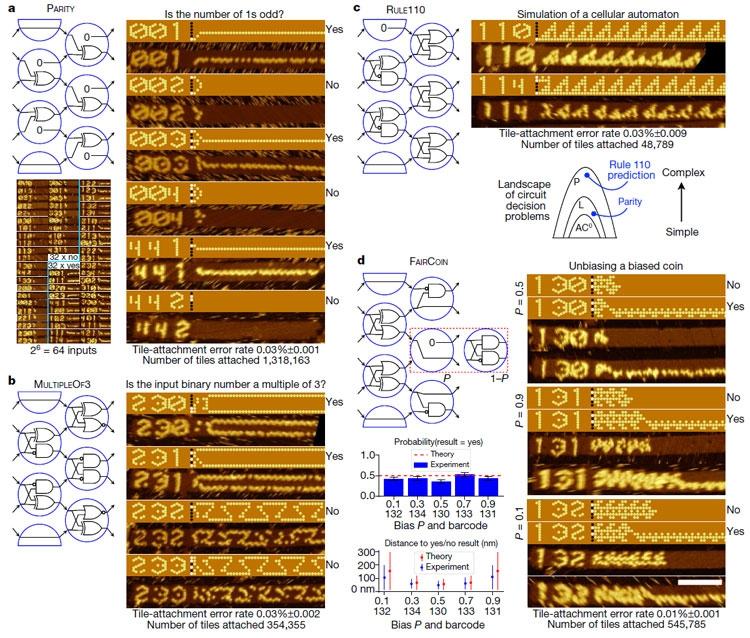 Примеры алгоритмов с использованием вентилей-ДНК и набором заданных последоваельностей