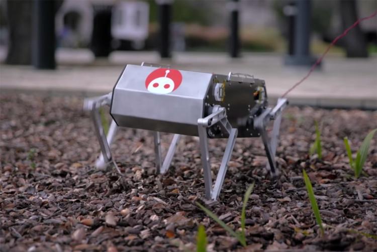 """Небольшой четвероногий робот Doggo умеет делать сальто"""""""