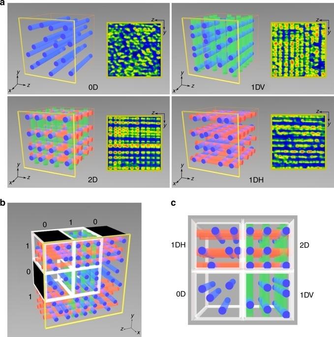 Компьютерная визуализация вычислительных нитей образованных внутри мягкого полимера. (Изображение: Университет МакМастерс)