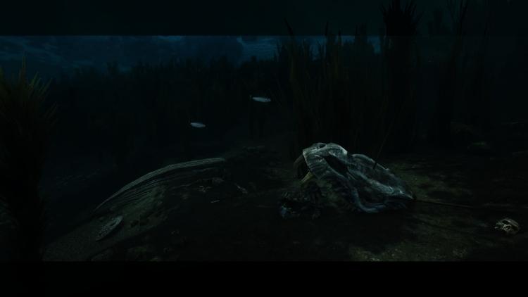 """Глубинная детализация: мод для TES V: Skyrim добавляет проработанный подводный мир"""""""