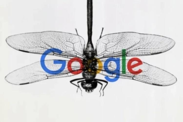 """Google закрывает проект по разработке поисковой системы с цензурой для Китая"""""""