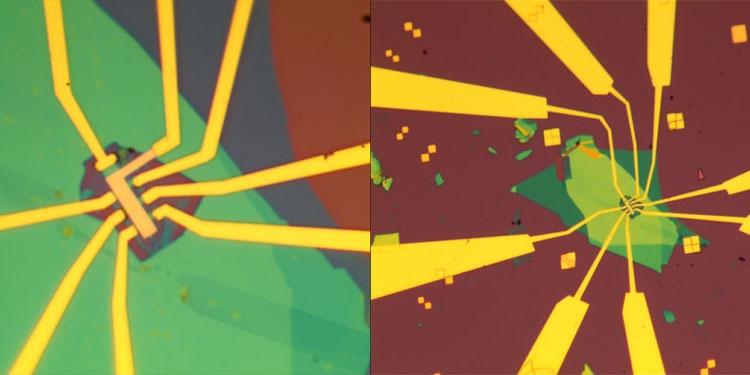 Экспериментальная структура под электронным микроскопом (Guorui Chen/Berkeley Lab)