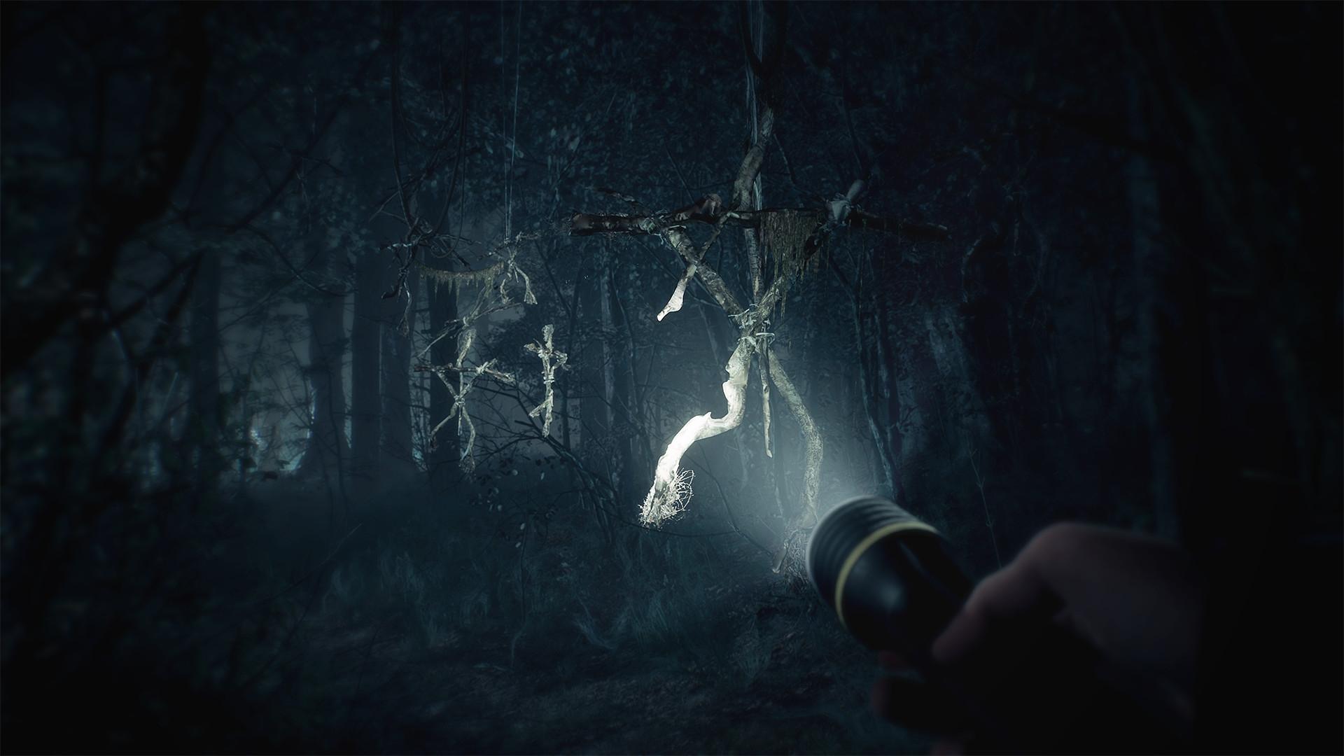 Появился геймплейный трейлер игры помотивам ужастика «Ведьма изБлэр»