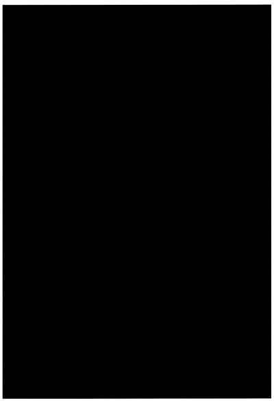 Пример печати чёрного фона с наивысшим качеством печати