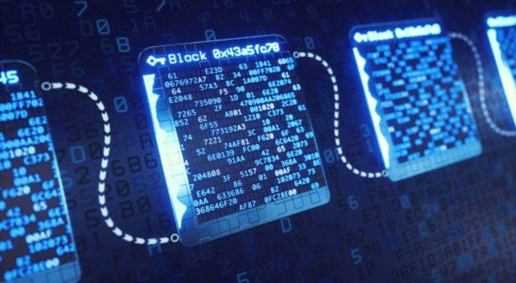 Cryptopys