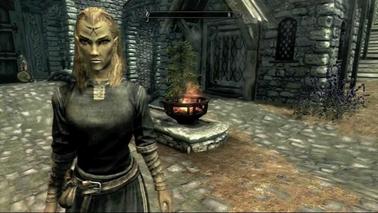 """Моддер переработал прокачку в The Elder Scrolls V: Skyrim, привязав её к выбору расы"""""""