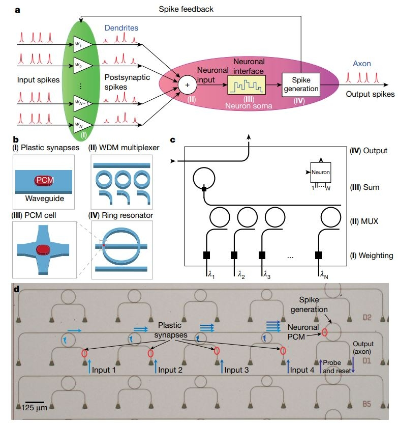Схематичное изображение нейронной сети из научной работы группы Вольфарама Перниса