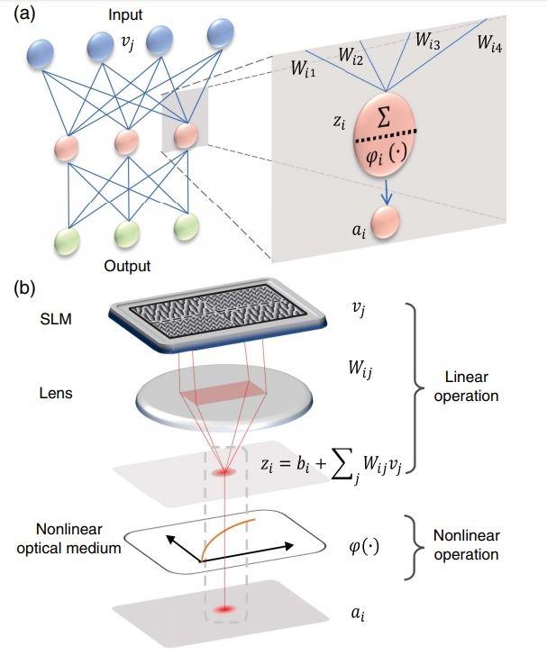 Многослойная полностью оптическая нейронная система разработанная учёными из Гонконга