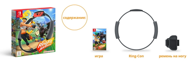 """Наследие Wii Sports: Nintendo представила «новый вид приключенческих игр» — Ring Fit Adventure"""""""
