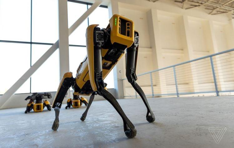 "Робот Spot от Boston Dynamics покидает пределы лаборатории"""